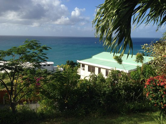 Villa Marbella Suites: view from cruzan apartment
