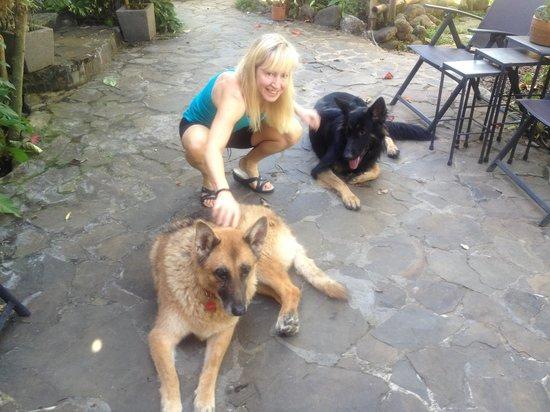 Pura Vida Hotel: Yagi and Bandit