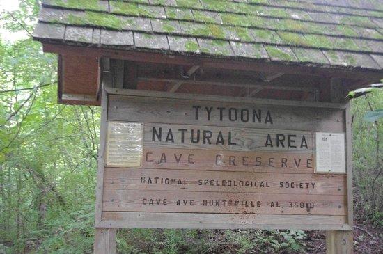 Tytoona Cave