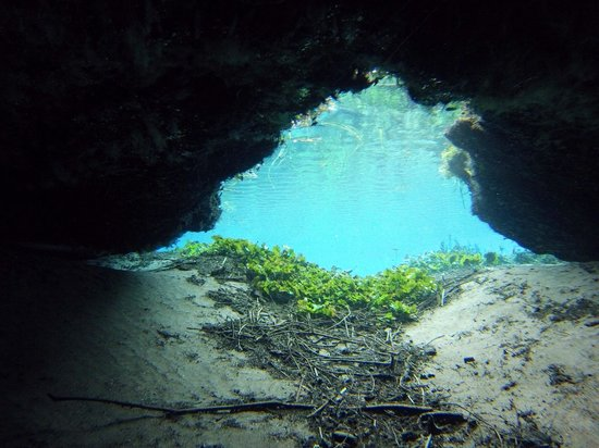 Media Luna School of Diving : Cueva