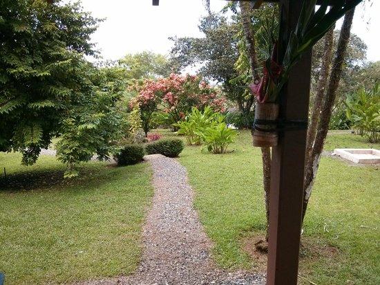 Diquis Del Sur : Vue de notre balcon