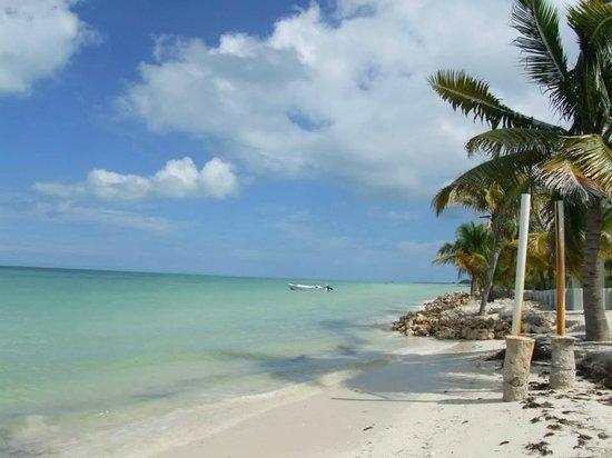 Hostel & Cabanas Ida y Vuelta Camping: esto es caminando por la playa rumbo a la isla de la pasion