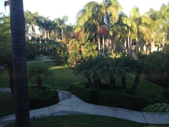 Sheraton La Jolla Hotel : Grounds