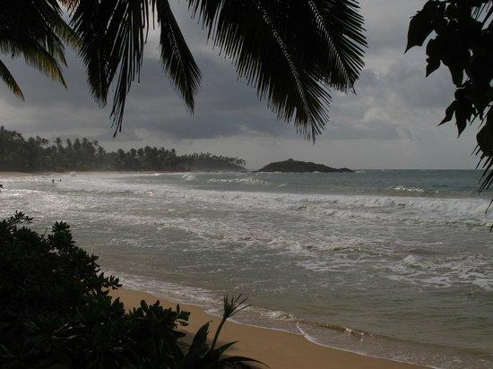 Paradise Beach Club: Beach view