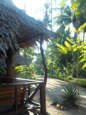 Pasai Cottages: the garden