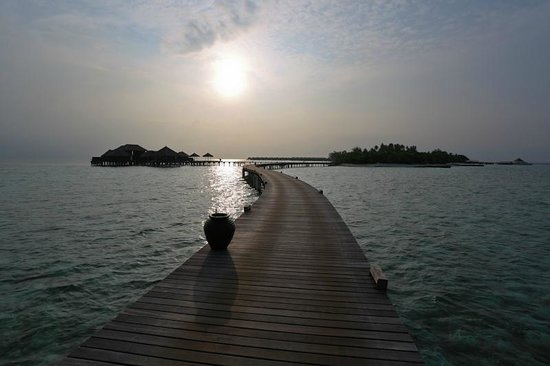 Coco Bodu Hithi : Another morning walk