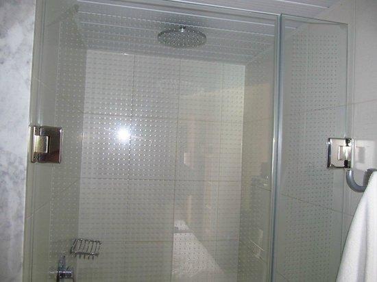 Ibis Santiago Estacion Central : ducha