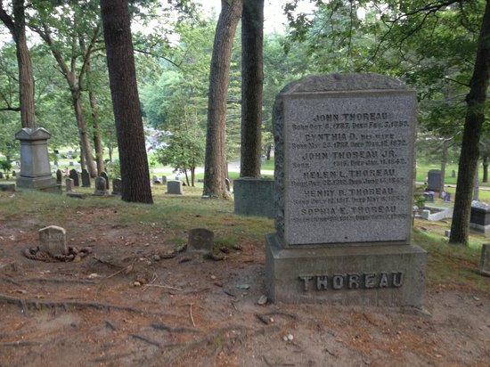 Sleepy Hollow Cemetery: Henry David Thoreu