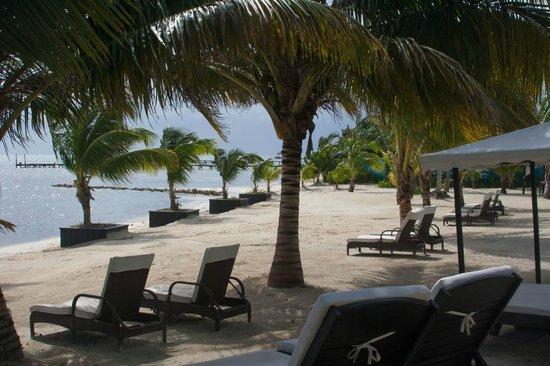 Las Terrazas Resort : Las Terrazas beach