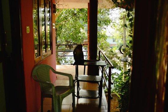 Jungle Paradiso: Monkey on the balcony