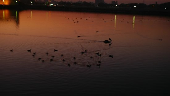 Lakhota Talav: The lake
