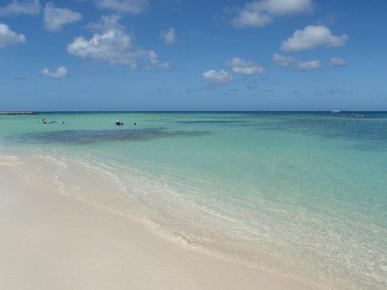 Palm Beach : Che mare!