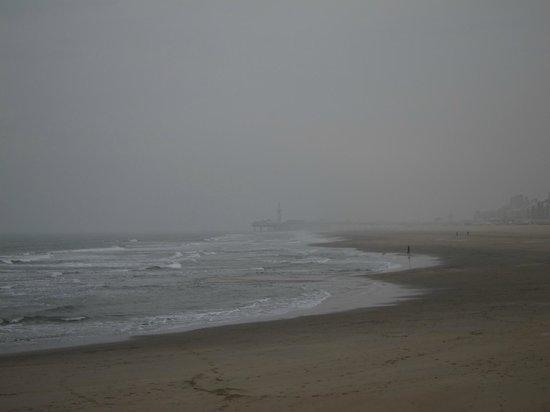 Pier and Promenade: Побережье