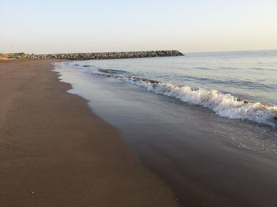 Hilton Fujairah Resort: Beautifully maintained beach!