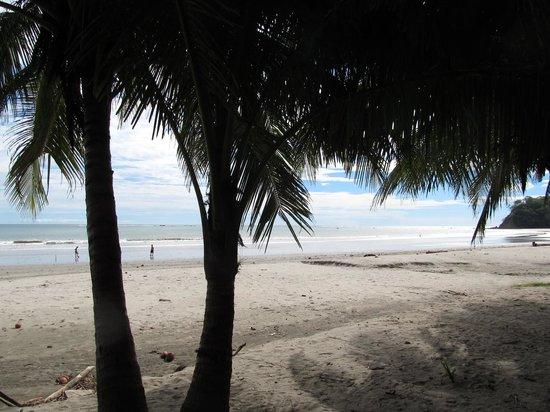 Samara Beach: Samara Strand 2