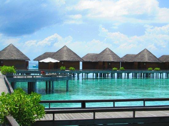 Baros Maldives : Water Villas