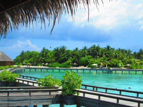 Baros Maldives : View of island
