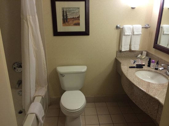 Hilton Garden Inn Ontario / Rancho Cucamonga: The bathroom, cause I know you want to see this :)