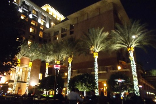 The Westin Kierland Resort & Spa: Looking up from the fire pit at night - sit out and enjoy