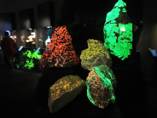 Perot Museum of Nature and Science: Rocks that glow under a kind of light!