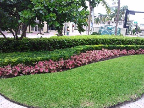 Loews Miami Beach Hotel : Местность отеля