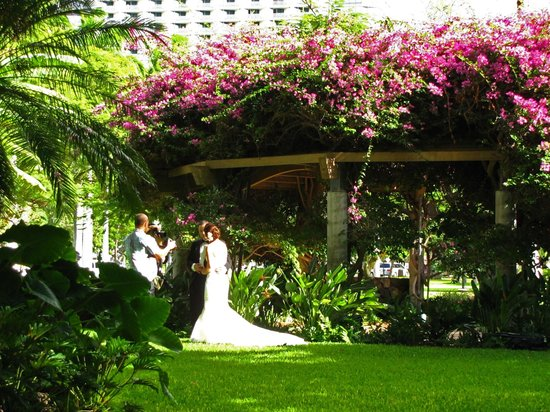 Hale Koa Hotel : Wedding at plumeria garden