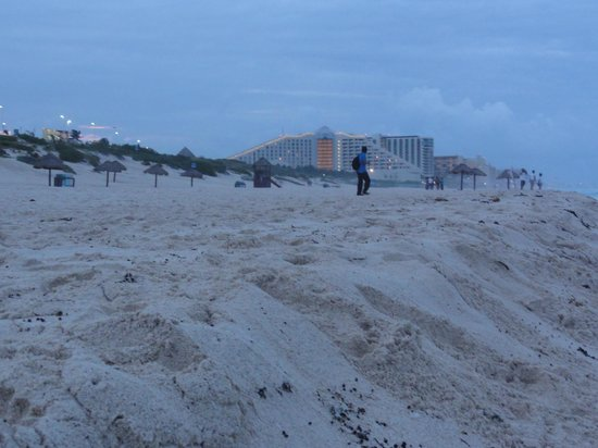 Playa Delfines : Panoramic view of the hotels