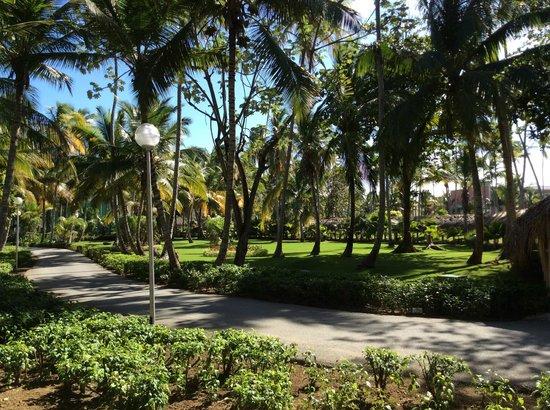 Grand Palladium Bavaro Suites Resort & Spa : Resort grounds