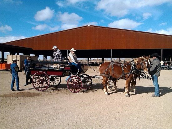 Lazy D Rockin P Ranch Carriage Rides - Tours: Wagon at AMERICAN RANCHES Prescott