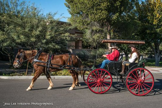 Lazy D Rockin P Ranch Carriage Rides: Touring the town by horse drawn carriage