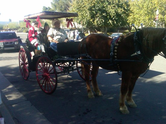 Lazy D Rockin P Ranch Carriage Rides - Tours: Santa Clause riding the carriage