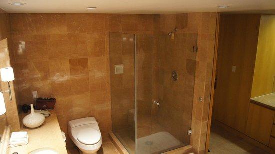 Inn at Laurel Point: Shower showing granite finish