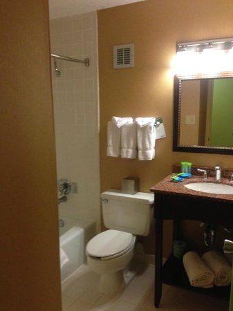 Radisson Hotel Rochester Riverside: Bathroom