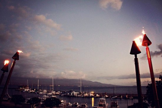 Saltimbocca: Early evening view of Ma'alaea Harbor