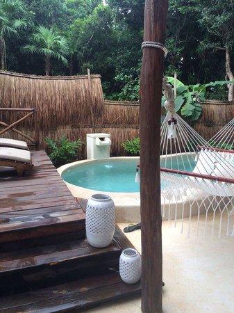 Viceroy Riviera Maya : Alberca en la suite