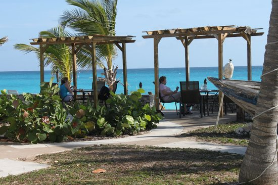 Exuma Palms Hotel: Patio behind Blue restaurant overlooking the beach & ocean