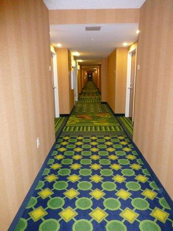 Fairfield Inn & Suites by Marriott Naples : Hallway!