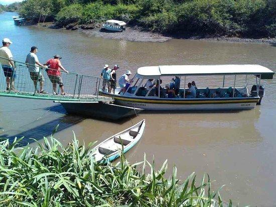 Extreme Costa Rica - Private Tours: Palo Verdo (land tour)