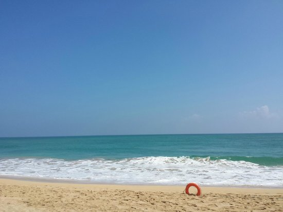 Excellence Punta Cana: Can't wait to enjoy this view with my own eyes again!