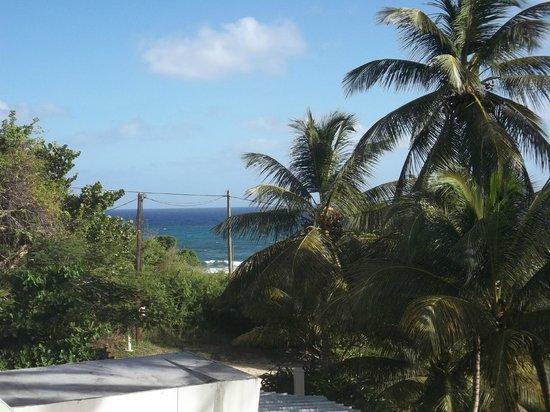 Le M Hotel Marie Galante: Un vrai petit paradis