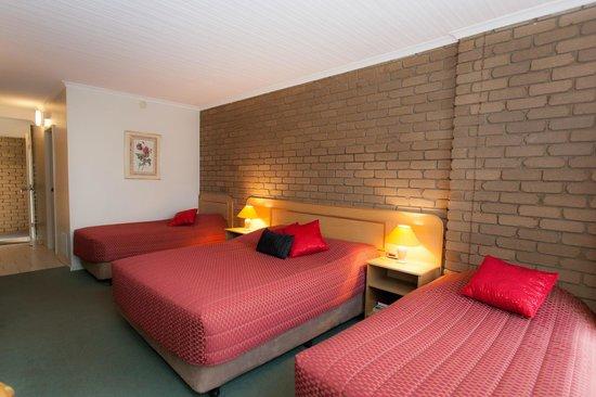 Strzelecki Motor Lodge: Spa  Family Room sleeps 4