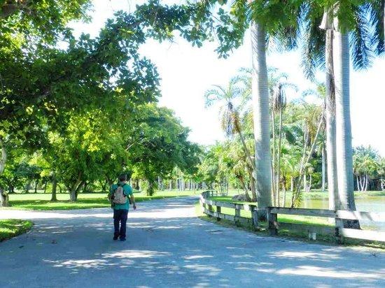 Crandon Park Beach Old Miami Zoo Right By