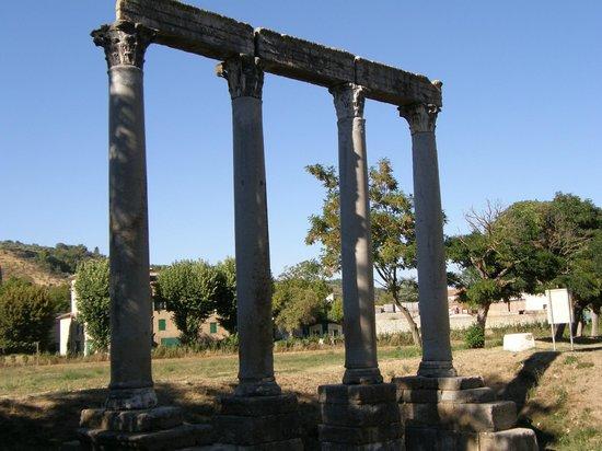 O Verdon : Riez - Roman Ruins