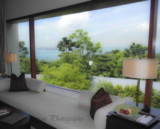 Capella Singapore: view