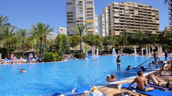 Sol Pelícanos Ocas: The clean, very fun pool