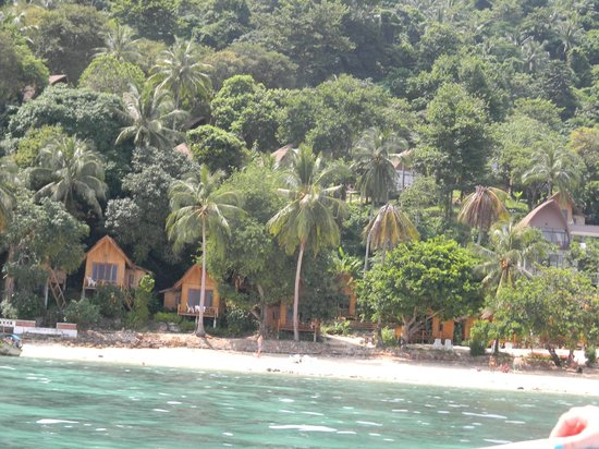 The Cove Phi Jungle With Bungalows