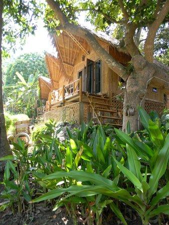 Rantee Cliff Beach Resort: tree house