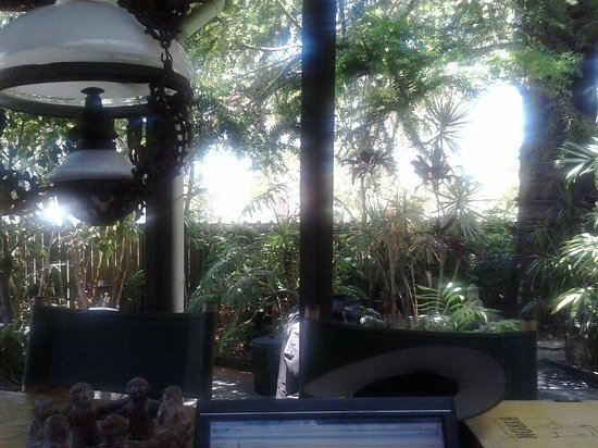 Bamboo Cottage B&B: My view as I write this review