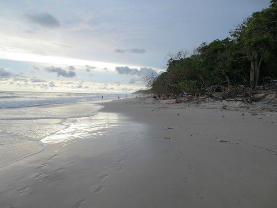 Cuesta Arriba Hotel: beach