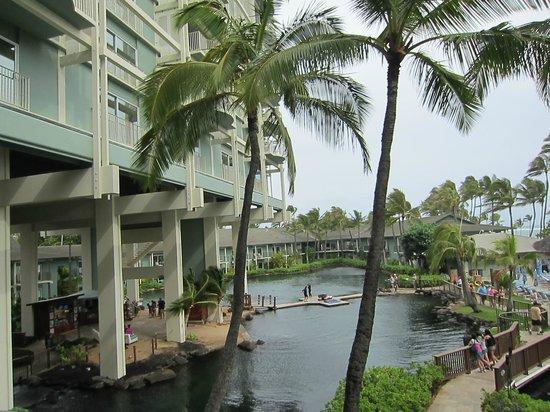 The Kahala Hotel & Resort : ラグーン